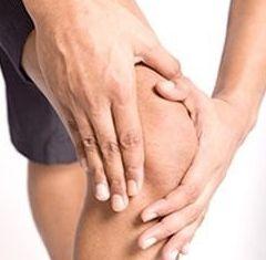 Акулячий хрящ добре знімає болі в суглобах