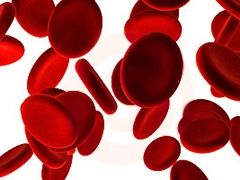 Аутоімунна гемолітична анемія