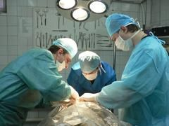 Хірург