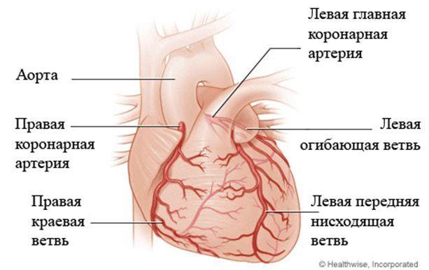 Лікування ішемічної хвороби серця - коронарне шунтування