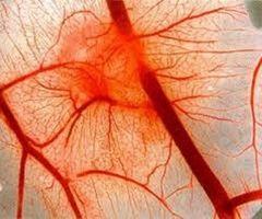 Порушення кровообігу