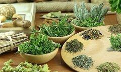 Очищення організму травами