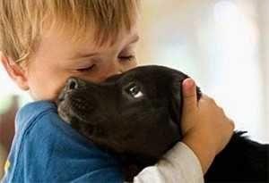 Як лікувати атопічний дерматит у дітей - заводите собаку