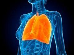 Гострий трахеобронхіт вражає легені