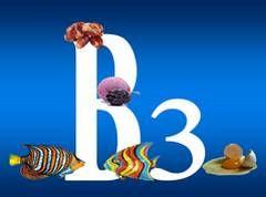 Вітамін B3